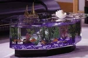 Как сделать и установить аквариум и освещение к нему своими руками (видео)
