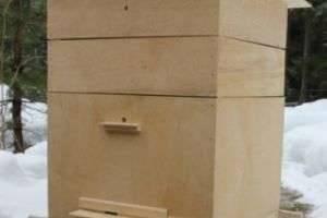 Как построить улей без посторонней помощи