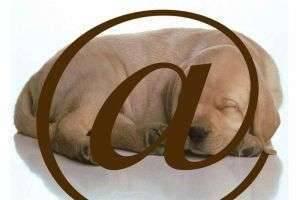 Почему мы называем символ @ собакой?
