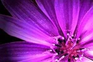 Сам себе художник, или Как получить фиолетовый цвет
