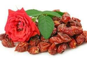 Как высушить шиповник в домашних условиях: как сохранить все полезные свойства ягоды и какие есть варианты сушки