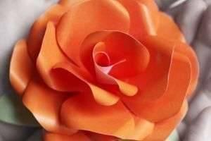 Как сделать цветы из бумаги своими руками – самые красивые композиции