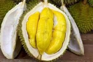Невероятно вонючий фрукт оказывается очень полезен!