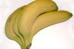 Можно ли кормящим мамам бананы – что говорят специалисты?