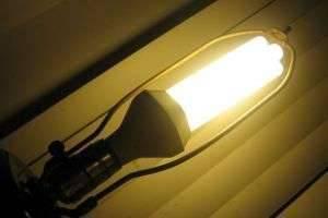 Энергосберегающие лампы: так ли они безопасны?