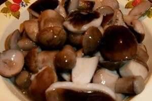 Как мариновать белые грибы: боровики, маринованные разными способами