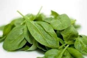 Почему шпинат полезен и как его употреблять в пищу?