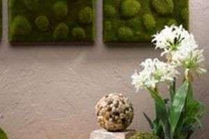 Искусственный мох: особенности, способы изготовления и идеи для декора