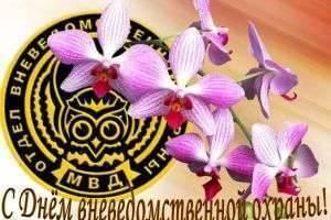 День вневедомственной охраны: история праздника