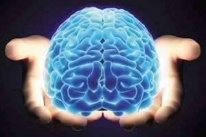 На сколько процентов работает мозг человека?