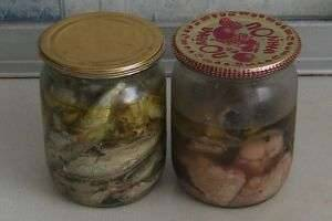 Как приготовить консервы в домашних условиях: рецепты и советы