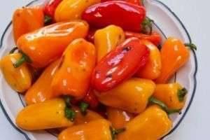 Маринованный перец на зиму – рецепты с маслом, медом, чесноком