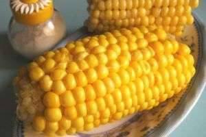 Кулинарные секреты: как варить кукурузу в початке?