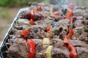 Рецепт шашлыка из говядины: простой, вкусный, проверенный