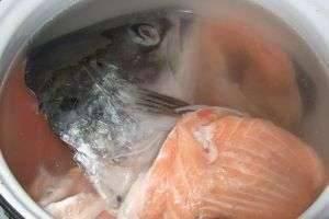 Уха из головы семги: как приготовить и какие продукты использовать
