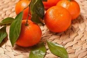 Все о новогодних фруктах, или Польза и вред мандаринов