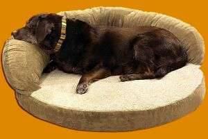 Создаем уютное место для своего питомца — лежанка для собаки своими руками