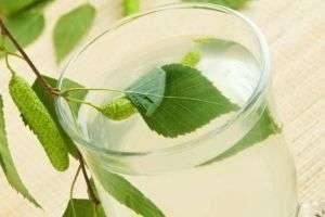 Самогон из березового сока: технология производства
