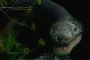Самые страшные в мире фильмы ужасов: проверенная классика и хиты