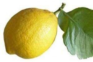 Что делать, если я лимон? Быть лимоном — не так уж и плохо!