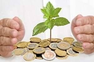 С чего начать свой бизнес с минимальным капиталом: лучшие идеи
