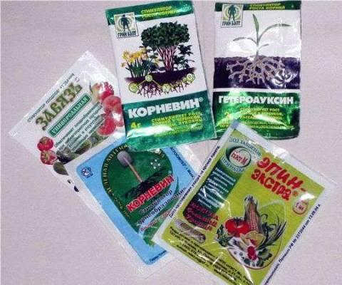 Применяем биостимуляторы для растений правильно