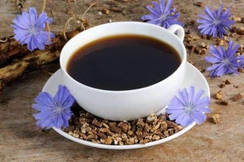 Цикорий, как полезная замена кофе