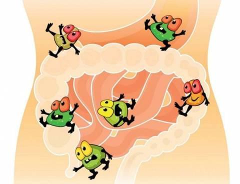 Как лечить дисбактериоз, вызванный антибиотиками?