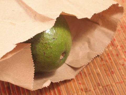 Как выбрать спелое авокадо в магазине?