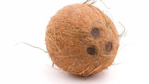 Как выбрать спелый кокос?