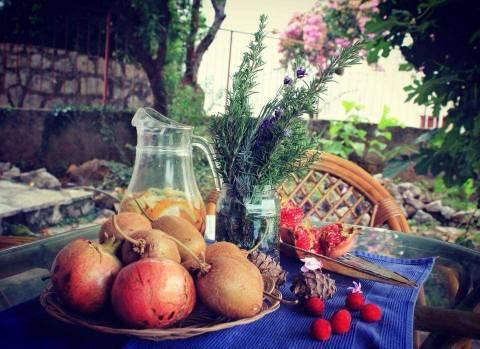 Какие фрукты растут в Черногории?
