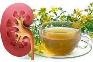 Лечение и профилактика обострения пиелонефрита