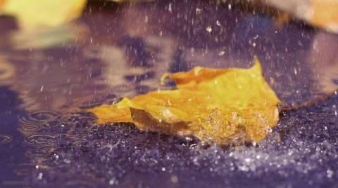 Обложной дождь: как это и что значит?