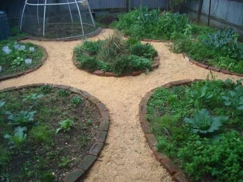 Опилки для огорода: для чего и как использовать?