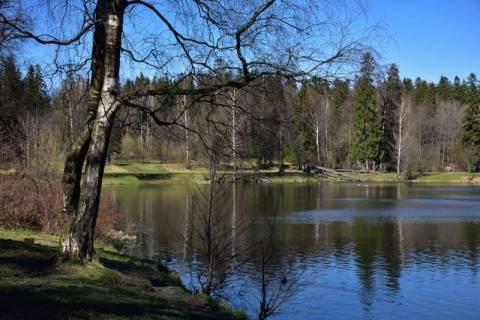 Петербург: Шуваловский парк