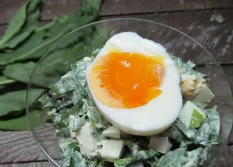 Щавель с яйцом: рецепты приготовления