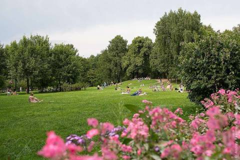 Таврический сад: Петербург и его достопримечательности
