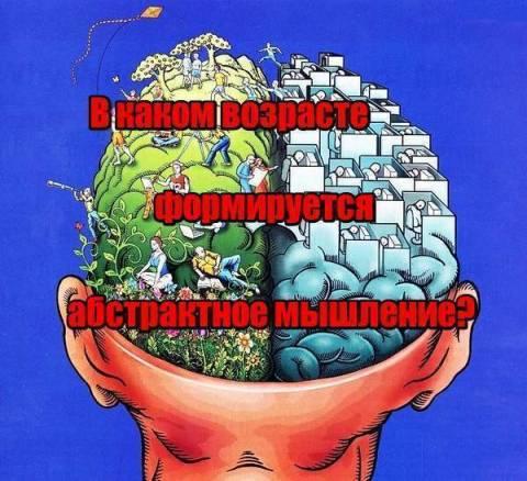 В каком возрасте формируется абстрактное мышление?