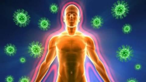 Врожденный и приобретенный иммунитет человека