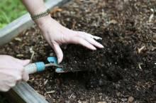 Основные рекомендации по подготовке теплицы к посадке весной