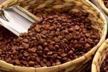 Где купить вьетнамский кофе и как правильно его заваривать