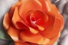 Как сделать цветы из бумаги: пошаговая инструкция