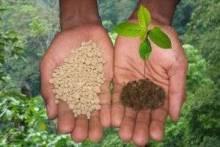 Удобрения для огорода: какие и для чего нужны, как их вносить в почву