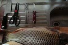 Как почистить рыбу от чешуи правильно, легко, быстро