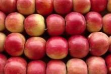 Вред польских яблок: миф или истина