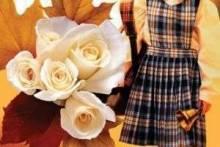 Какие цветы дарить на 1 сентября: лилии, розы, герберы