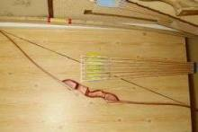 Как сделать лук из дерева: по стопам Робина Гуда и Вильгельма Телля