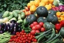 Удобрения для овощных культур: моркови, баклажанов, свеклы, кабачков