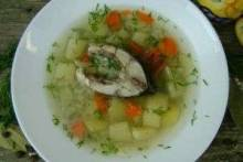 Уха из карпа: рецепт приготовления вкусного и очень сытного блюда