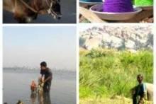 Incredible India - невероятная Индия! Почему стоит поехать?